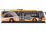 扬子江客车WG6120BEVHR