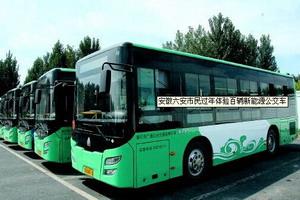 安徽省:加快公共机构新能源汽车充电基础设施建设