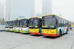 厦门将在两站试行分站停靠 缓解公交列车化现象