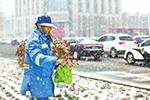 河南降雪,高速公路禁止七座以上客车通行