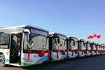 首批135辆金龙新能源车沈阳上线 暖心出行路