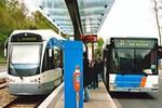 美国研究发现公交使用者对经济影响越来越大