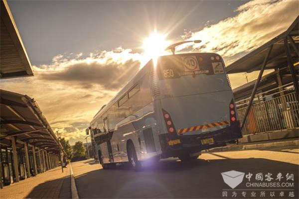 Interline公交服务公司选择配置艾里逊变速箱