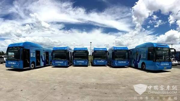 澳洲第三大城市加盟比亚迪全球公交电动化阵容