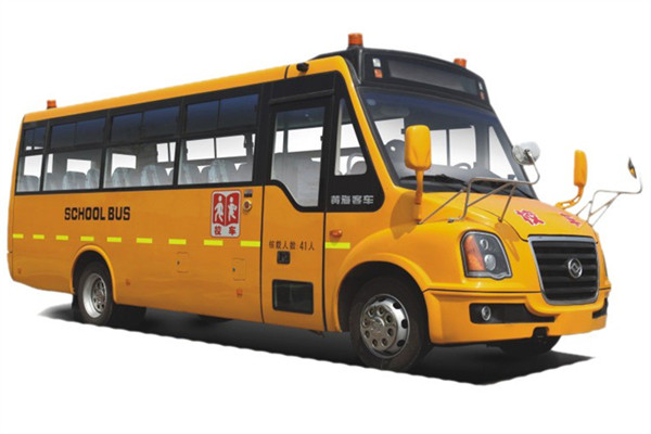黄海DD6930C01FX中小学生专用校车(柴油国车24-46座)