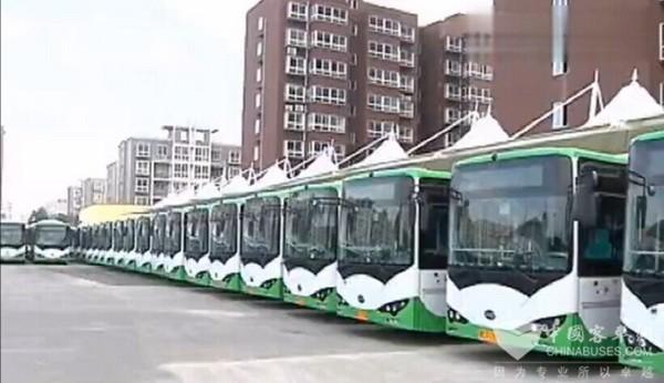 河南安阳:300辆比亚迪纯电动公交车即将投入运营