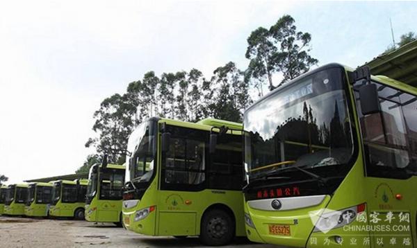 广东东莞:樟头木公交公司已有95辆纯电动公交