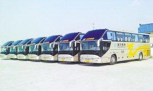 河北沧州:114辆纯电动公交投入运行