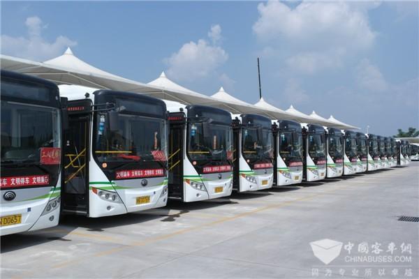 安徽合肥:2018年新增公交车辆均是新能源车型