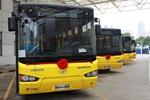 广西:2017年度广西新能源公共汽车发展持续增长