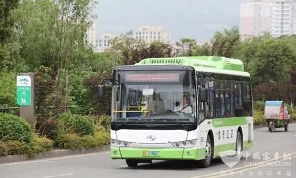 """浙江乐清:""""智慧公交""""打造便利公共交通 绿色出行受宠"""