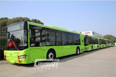 海格纯电动公交批量出口韩国