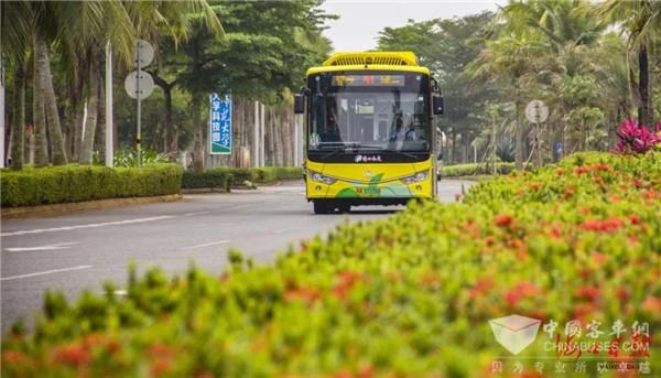"""海口公交:城市更新│做好公交""""加减法"""" 畅通绿色便民路"""