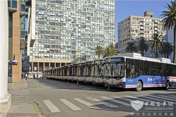 乌拉圭总统助阵 比亚迪向当地最大的公交运营商交付20台纯电动大巴