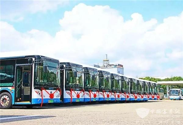 又一批申龙新能源公交上线浦东 智能人性化配置样样全!