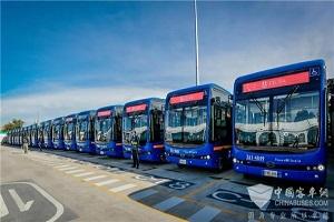 2021开门红!比亚迪再获哥伦比亚596台纯电动巴士订单