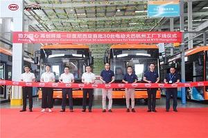 再谱辉煌篇章!印度尼西亚首批30台比亚迪纯电动大巴于杭州工厂下线