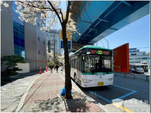 铸就可信赖文化 韩国民众为何点赞金龙纯电动公交?