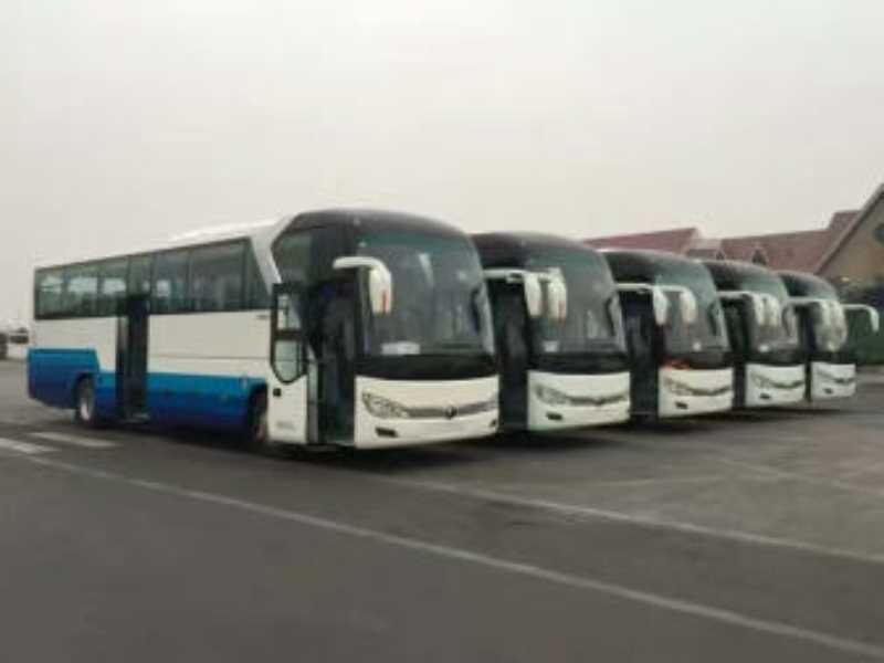 北京大兴区豪华大巴租车业务 婚宴租车 单位包车 拓展租车业务