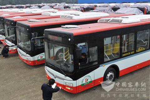 排放整齐的LNG公交车