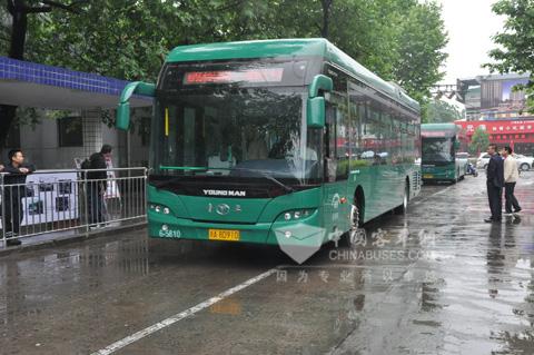 青年纯电动公交