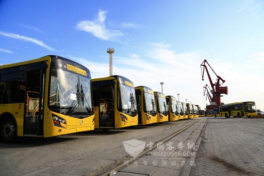 200多台崭新的金旅校车即将发往沙特