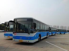 2009年国内公交第一标 大金龙拔得头筹