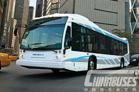 新星巴士 Nova Bus