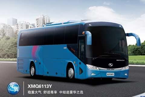 金龙客车XMQ6113Y
