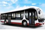 扬子江WG6121CHA4公交车(柴油国四29-46座)