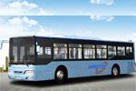 扬子江WG6120NHM4公交车(天然气国四29-46座)
