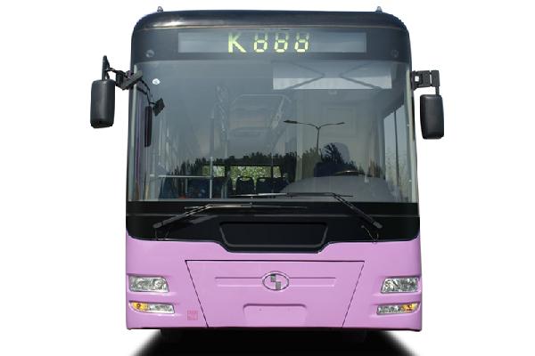 少林SLG6120C4GZR公交车