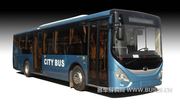 五洲龙FDG6123G公交车