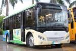 五洲龙FDG6801EVG公交车(纯电动15-24座)