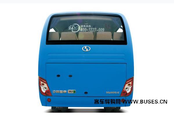 少林SLG6690T5Z客车