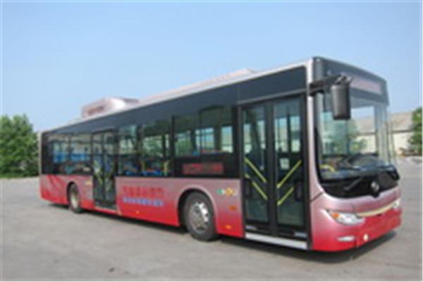 黄海DD6129CHEV8N公交车(NG/电混动国五18-42座)