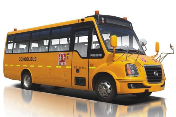 黄海DD6930C02FX小学生专用校车
