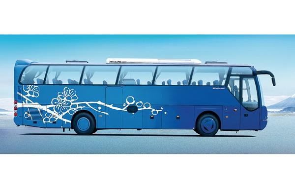青年JNP6122M-1客车(柴油国四27-57座)