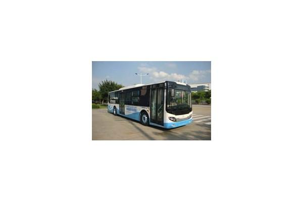 五洲龙FDG6123EVG公交车