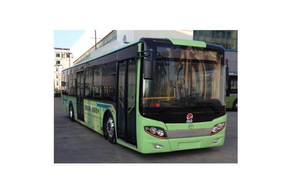 五洲龙FDG6121EVG公交车