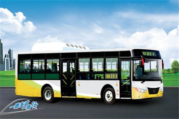 友谊ZGT6109DHS1公交车