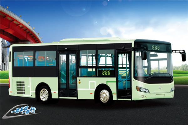 友谊ZGT6862DHV公交车