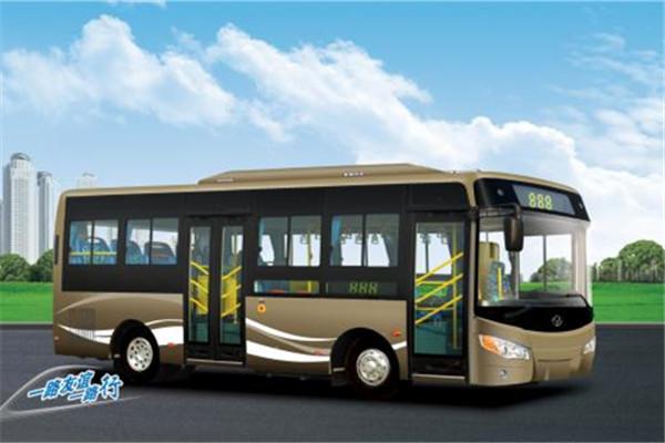 友谊ZGT6760DHV公交车