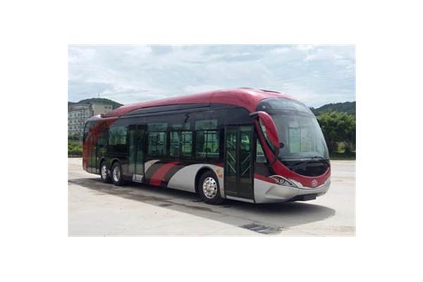 银隆GTQ6146BEVBT8公交车