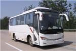 金龙XMQ6859AYN5C客车(天然气国五24-37座)