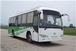 金龙XMQ6110BGPHEVD5公交车(柴油/电混动国五10-49座)