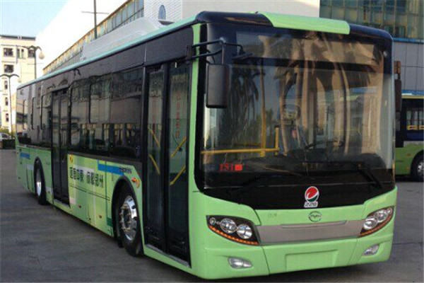 五洲龙FDG6125EVG公交车(纯电动10-31座)