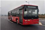 中车时代电动TEG6129BEV04公交车(纯电动10-38座)