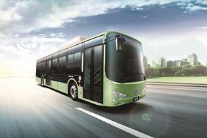 比亚迪BYD6121LGEV5公交车(纯电动10-41座)
