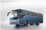 中车电动TEG6110EV06客车(纯电动24-48座)